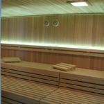 ferienhaus mit sauna, tischlerei kiel, sauna erkältung, sauna aufguss,