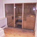 Sauna Glastüren (4)